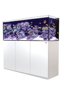 Red Sea Reefer 425 XL Biały